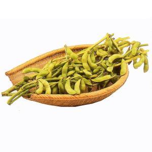 枝豆 川北産 丹波 黒豆 枝豆 3束 3kg
