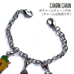 【チャーム用アレンジパーツ】チャーム用シルバーチェーン メール便 2,000円以上送料無料 Fz001