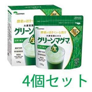 グリーンマグマ 170g 4個セット 【送料無料】