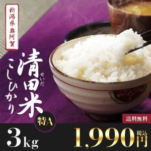 新米3kg 新潟県奥阿賀産 清田米コシヒカリ【送料無料】