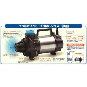 ツルミポンプ 海水用 水中横型ハイスピンポンプ【50TMLS2.25S】単相100V iisakura39