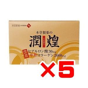 本草製薬 潤煌(うるおう) 60包×5箱セット 送料無料※北...