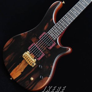"STR GUITARS OS624 #038 (Maccasar Ebony) ""REVOLE 30TH ANNIVERSARY"""