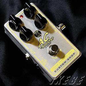 Xotic エキゾチック / AC-COMP|ikebe|02
