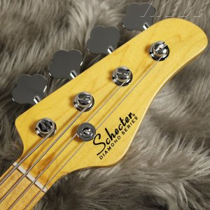SCHECTER / MODEL-T AD-MODEL-T (GlossBlack)|ikebe|05