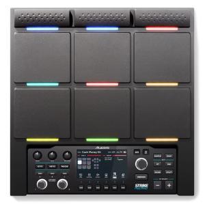 ALESIS Strike MultiPad (サンプラー&ルーパー付きパーカッション・パッド)|ikebe