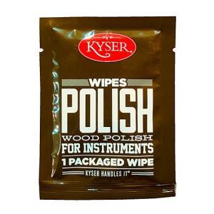 Kyser / POLISH WOOD POLISH FOR INSTRUMENTS [K500WIPE POLISH] ikebe