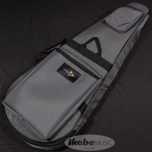 NAZCA ナスカ / プロテクトギグケース オールラウンドタイプ (Dark Gray#38) / 受注生産品|ikebe