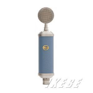 Blue microphones BlueBird (Blueマイク人気3機種期間限定セール!)