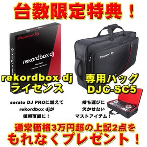 Pioneer DJ DDJ-SX2(Serato PITCH 'N TIME DJライセンス付属)|ikebe|02