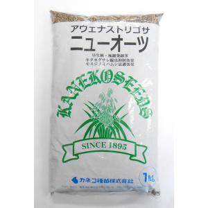 緑肥 ニューオーツ 1kg  カネコ種苗|ikedagreen
