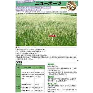 緑肥 ニューオーツ 1kg  カネコ種苗|ikedagreen|02