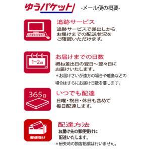 野菜種 ミニトマト アイコ 17粒 サカタ交配|ikedagreen|03