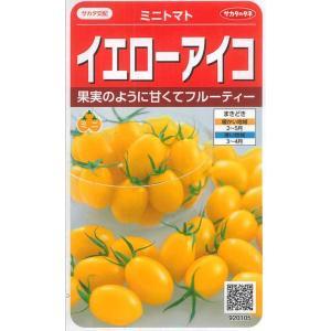 野菜種 ミニトマト イエローアイコ 13粒 サカタ交配