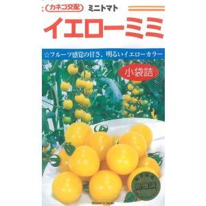 カネコ種苗 ミニトマト 種 イエローミミトマト 18粒