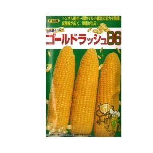 とうもろこし 種 ゴールドラッシュ86 80ml サカタ交配