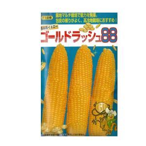 とうもろこし 種 ゴールドラッシュ88 45ml サカタ交配