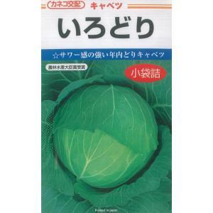 カネコ種苗 キャベツ 種 いろどり 1ml