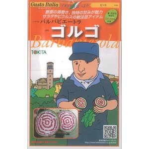 グストイタリア ビート 種 バルバビエートラ ゴルゴ 80粒 トキタ種苗