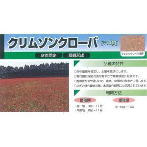 カネコ種苗 緑肥用 クリムソンクローバー 500g|ikedagreen|02