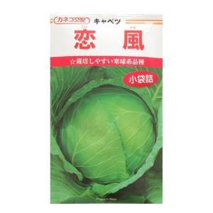 キャベツ 種 恋風 コート5千粒 カネコ種苗