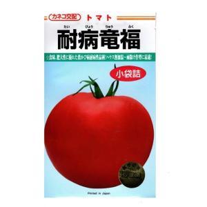 カネコ種苗 大玉トマト 種 耐病竜福 100粒