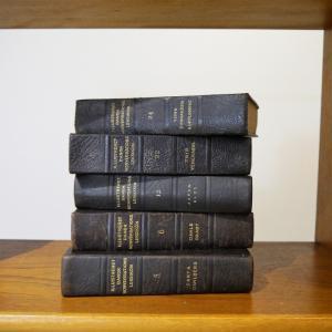 1冊/北欧デンマークディスプレイ洋古書/店舗・自宅のインテリアに大人気/アンティーク洋古書/UD8260/全国配送一律500円(税込)|ikeikakunet|07