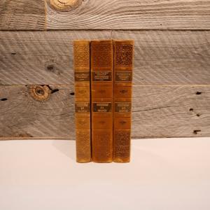 洋古書アウトレット / BIND-1(3冊セット) / 北欧デンマークのビンテージ / ディスプレイ用【全国配送一律500円(税込)】|ikeikakunet