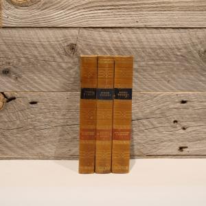 洋古書アウトレット / SIGRIDUNDSET-2(3冊セット) / 北欧デンマークのビンテージ / ディスプレイ用【全国配送一律500円(税込)】|ikeikakunet
