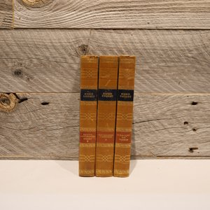 洋古書アウトレット / SIGRIDUNDSET-3(3冊セット) / 北欧デンマークのビンテージ / ディスプレイ用【全国配送一律500円(税込)】|ikeikakunet