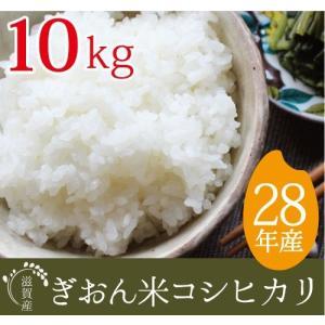28年産  コシヒカリ 送料無料 精米 10kg(5kg×2も対応) 滋賀県産ぎおん米 近江米|ikkadanran