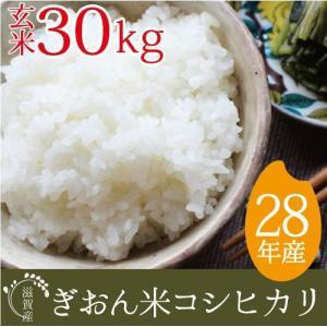 28年産 玄米 30kg コシヒカリ 送料無料 精米対応 滋賀県産ぎおん米  近江米|ikkadanran