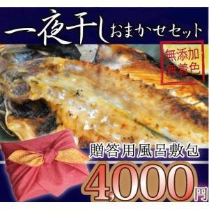 ギフト用 一夜干しおまかせ4000円セット 風呂敷 御中元|ikkadanran