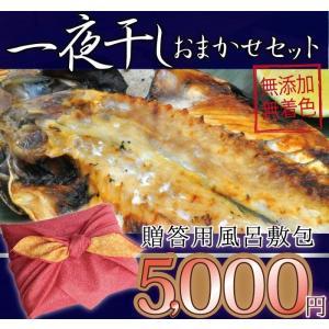 ギフト用 一夜干しおまかせ5000円セット 風呂敷 御中元|ikkadanran