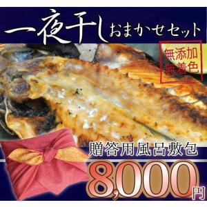 ギフト用 一夜干しおまかせ8000円セット 風呂敷 御中元|ikkadanran