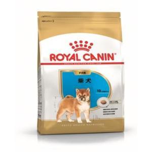 ロイヤルカナン 柴犬 子犬用 800g