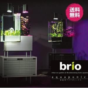 家庭用 アクアポニックス ブリオ 本体 brio 水槽 セット インテリア 循環システム ポンプ お...