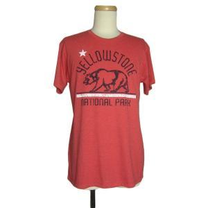 アメリカから入荷しました、イエローストーン国立公園の熊プリントTシャツ。  ●BODYブランド●AL...