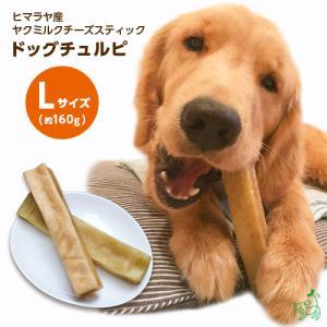 まとめ買い 犬 おやつ 無添加 ヒマラヤ産 ヤクミルクチーズスティック ドッグチュルピ Lサイズ 約160g×10個セット イリオスマイル ポイント消化|iliosmile