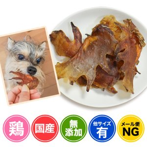 犬 おやつ とさか 無添加 国産 兵庫県産 鶏とさか 100g イリオスマイル ポイント消化|iliosmile