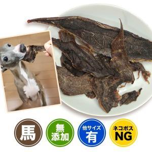 まとめ買い 犬 ジャーキー おやつ 無添加 カナダ産 馬すね肉 150g×5個セット イリオスマイル ポイント消化|iliosmile