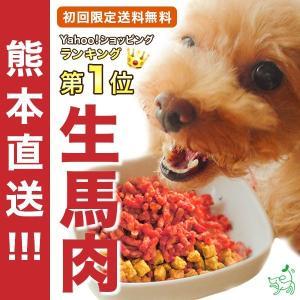 ドッグフード 馬肉 犬 国産 生肉 初回限定 熊本直送 新鮮 生馬肉 パラパラミンチ 300g×3袋...