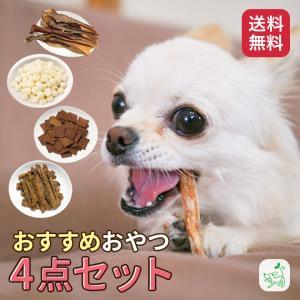 犬 おやつ 無添加 お試し 詰め合わせ 送料無料 20種より選べる4種 リリーセット 小型犬向け イリオスマイル 他商品との同梱不可 代金引換不可|iliosmile