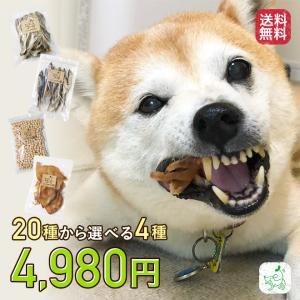 犬 おやつ 無添加 大袋 詰め合わせ 送料無料 20種より選べる4種 ワエナセット 小型犬 中型犬向...