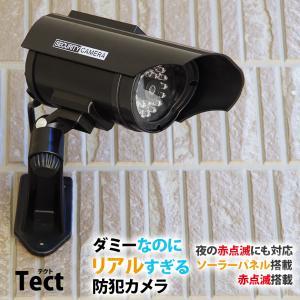 防犯カメラ ダミーカメラ ソーラー 電池交換不要 LED tect 送料無料|illumi