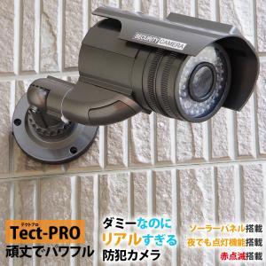防犯カメラ ダミーカメラ 電池交換不要 赤点滅 LED テクトPRO ハイエンドモデル 送料無料|illumi