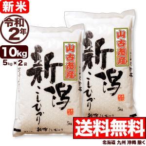 米 お米 10kg 新潟 山古志産コシヒカリ 5kg×2袋 ...