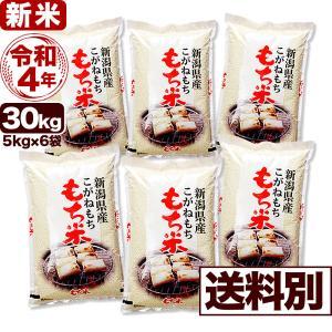 白米 30kg こがねもち 令和元年産 新潟産 小分け6袋 送料別