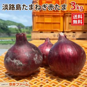 淡路島たまねぎ赤たま 3キロ 3kg|imaifarm