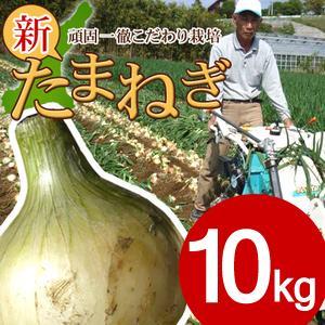 #特選  淡路島玉ねぎ10キロ# (M・Lサイズ)